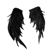 Feather Void  Wings